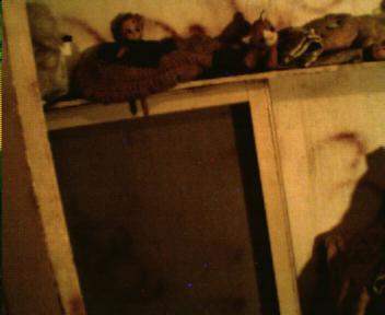 Closer Version of Doll Shelf